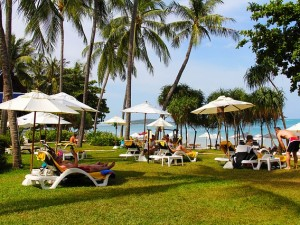 koh samui singles Find hotels on koh samui, th online good availability and great rates read hotel reviews and choose the best hotel deal for your stay.